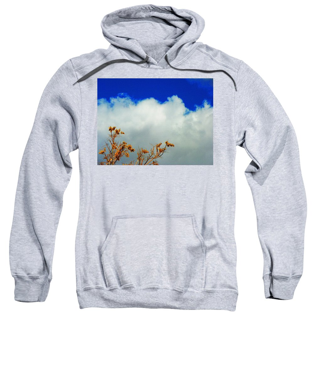 Expressive Sweatshirt featuring the photograph March by Lenore Senior