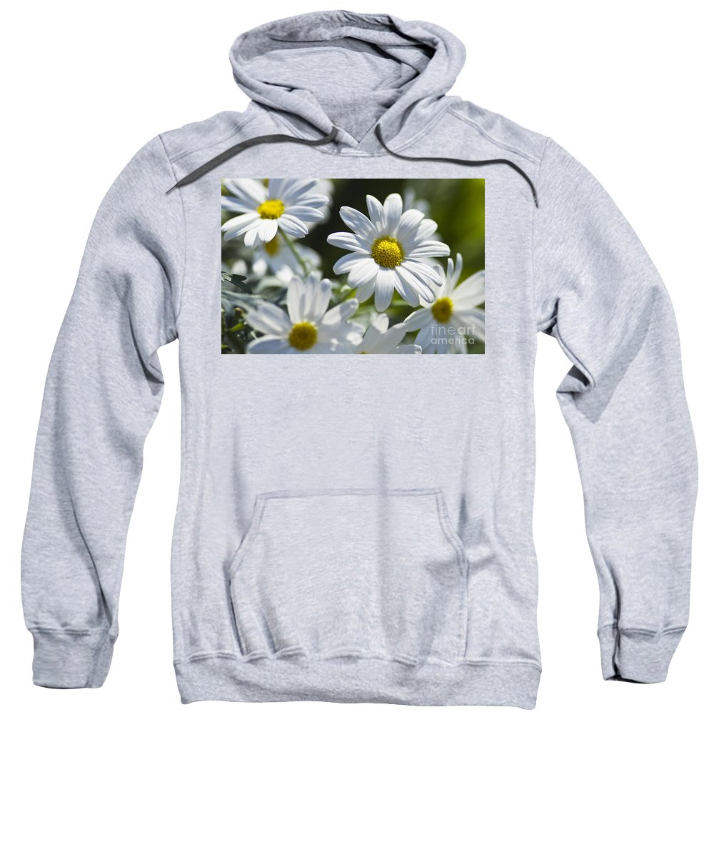 Heiko Sweatshirt featuring the photograph Marguerite by Heiko Koehrer-Wagner
