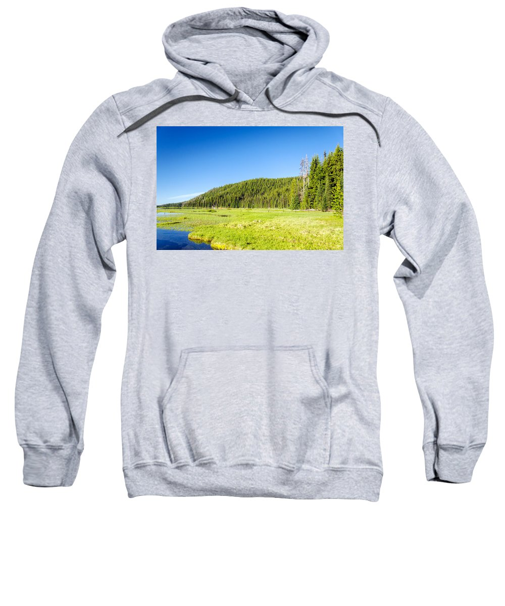 Forest Sweatshirt featuring the photograph Meadow And Forest by Jess Kraft