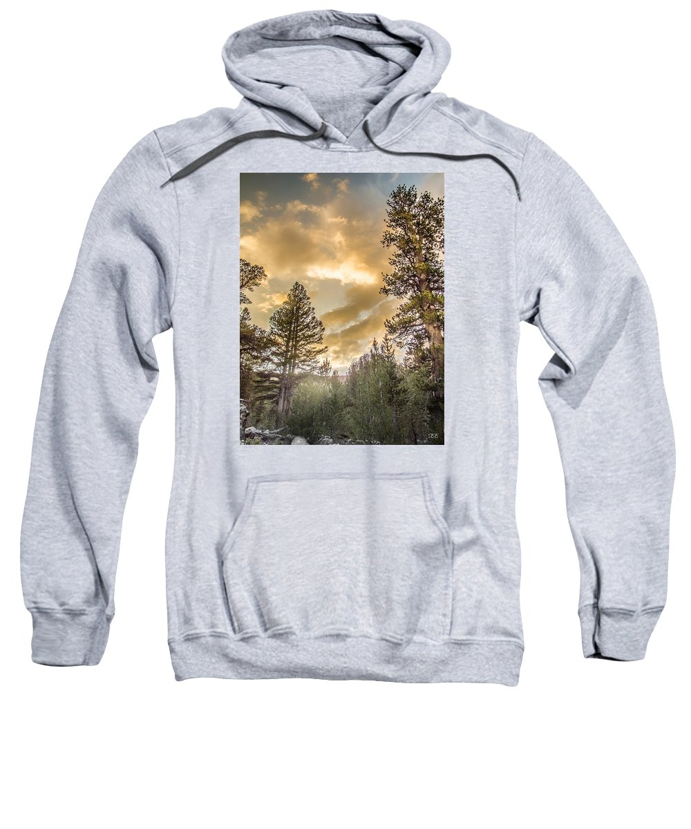 Meadow Sunset Gold Sweatshirt featuring the photograph Meadow Sunset Gold by Susan Eileen Evans