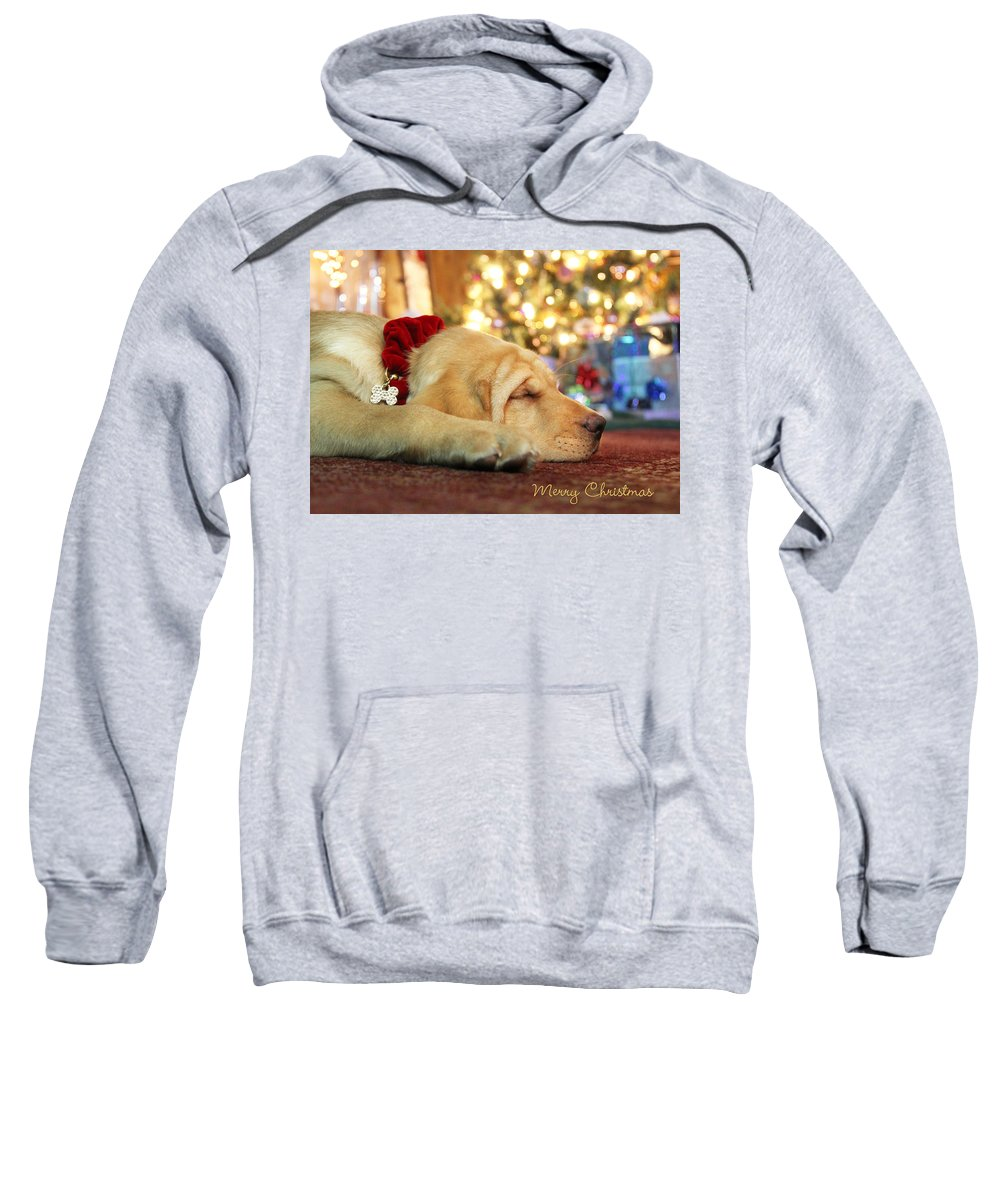 Merry Christmas Sweatshirt featuring the photograph Merry Christmas From Lily by Lori Deiter