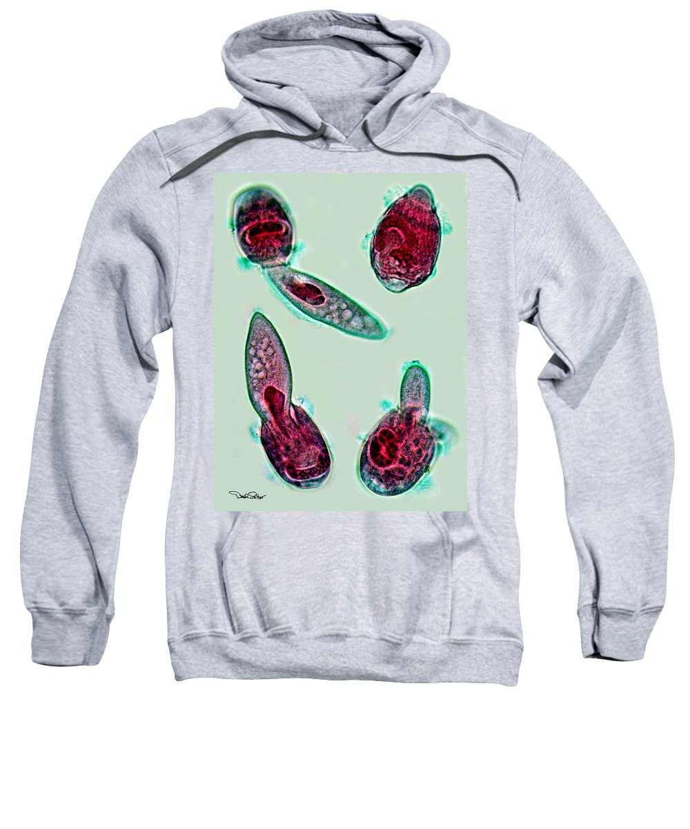 Microbes Sweatshirt featuring the photograph Microscopic Predation by David Salter