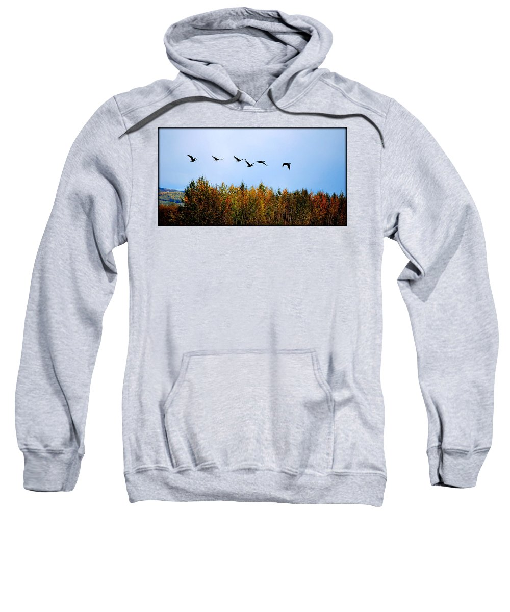 Geese Sweatshirt featuring the photograph Migratory Flight by Kathy Sampson