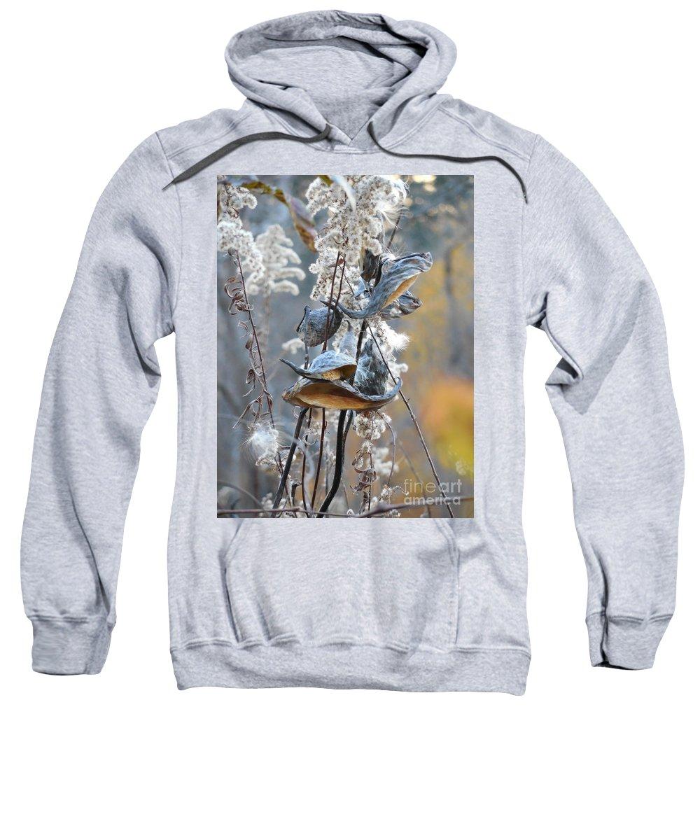 Floral Sweatshirt featuring the photograph Milkweeds In Autumn by Rowena Throckmorton