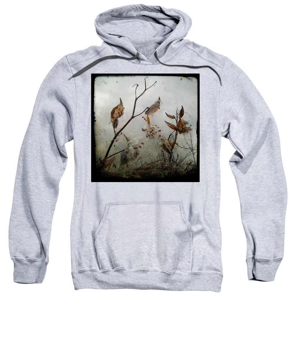 Milkweed Sweatshirt featuring the photograph Milky Milkweed by Gothicrow Images