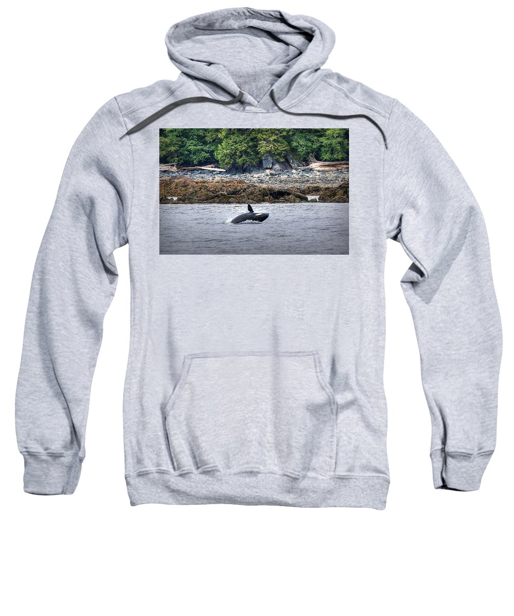 Sweatshirt featuring the photograph Misty Fjords Orca by Ryan Smith