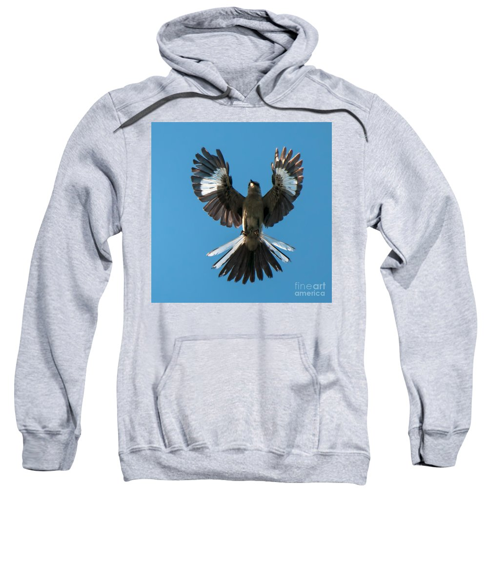Mocking Sweatshirt featuring the photograph Mocking An Angel by Photos By Cassandra