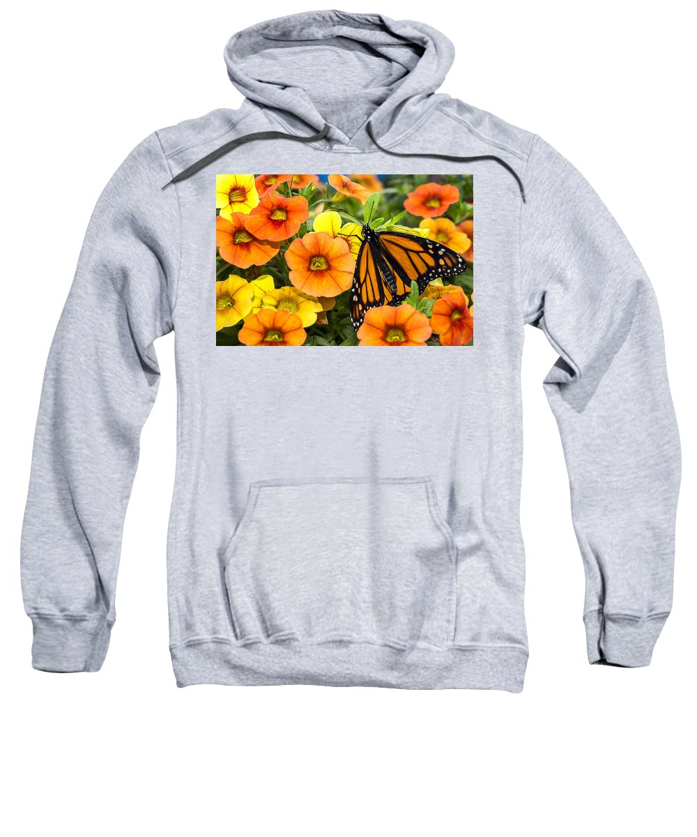Monarch Sweatshirt featuring the photograph Monarch Among The Flowers by Garry Gay