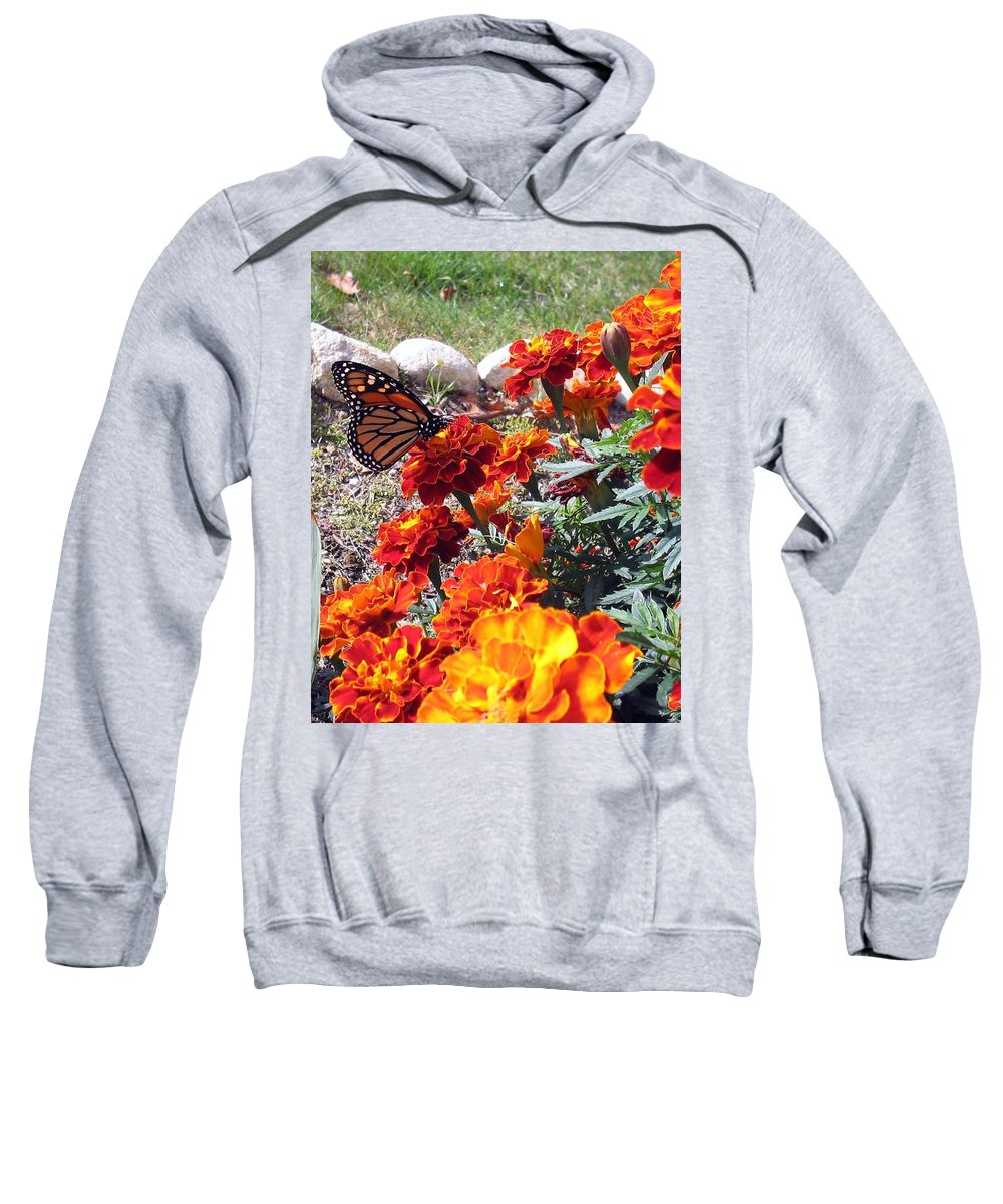 Monarch Sweatshirt featuring the photograph Monarch Among The Marigolds by Linda Feinberg