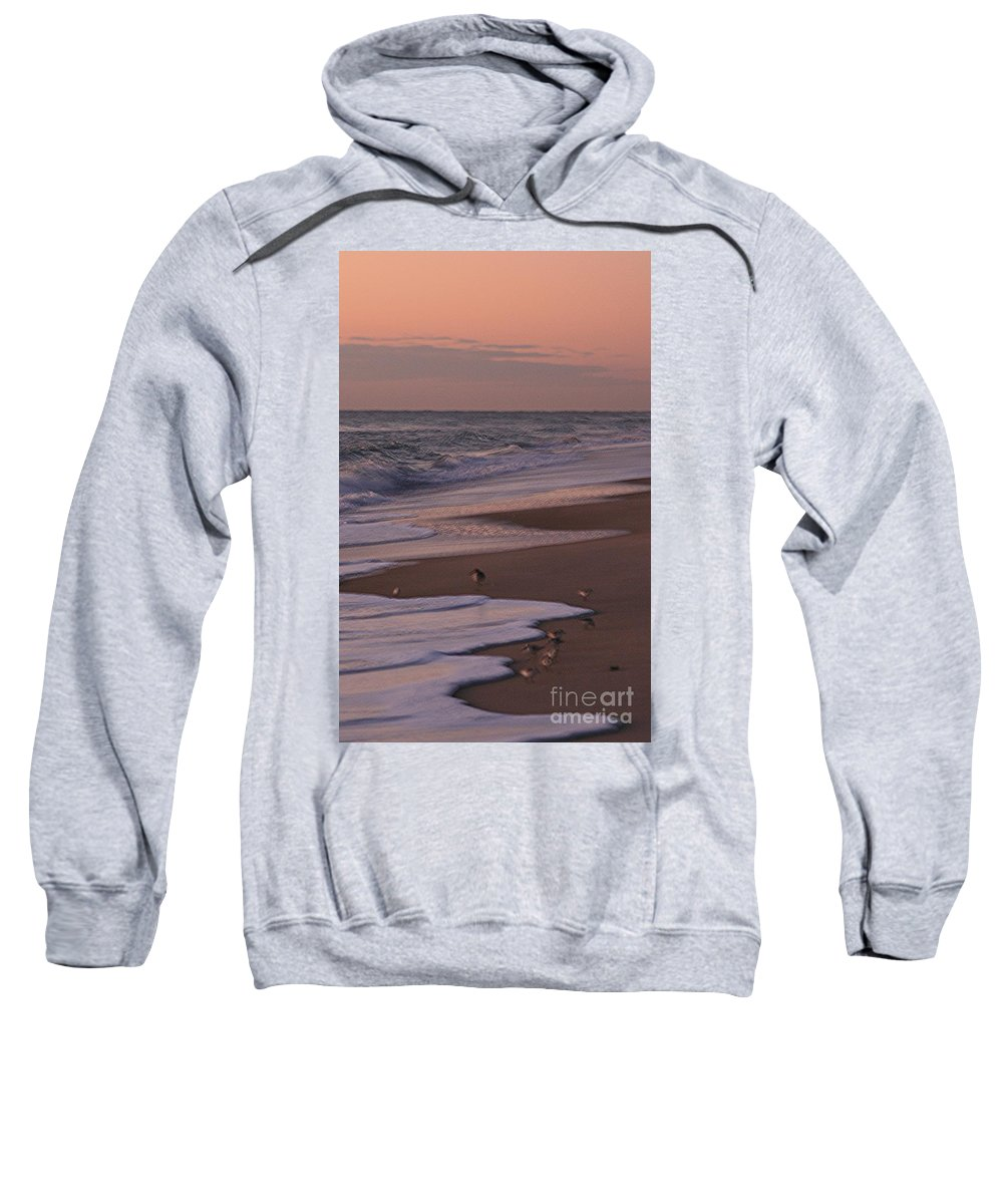 Beach Sweatshirt featuring the photograph Morning Birds At The Beach by Nadine Rippelmeyer