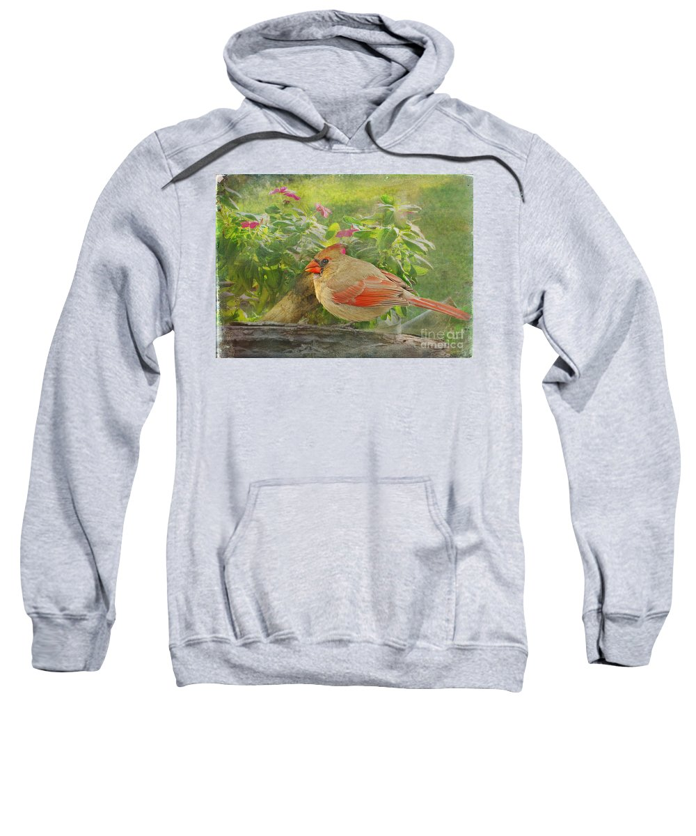 Nature Sweatshirt featuring the photograph Morning Cardinal by Debbie Portwood