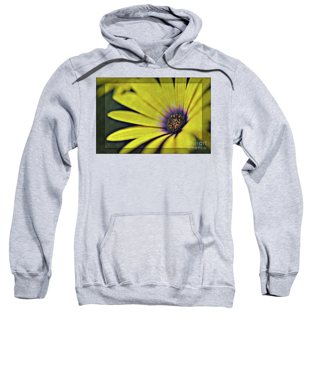 Botanical Sweatshirt featuring the photograph Morphology by Charles Dobbs