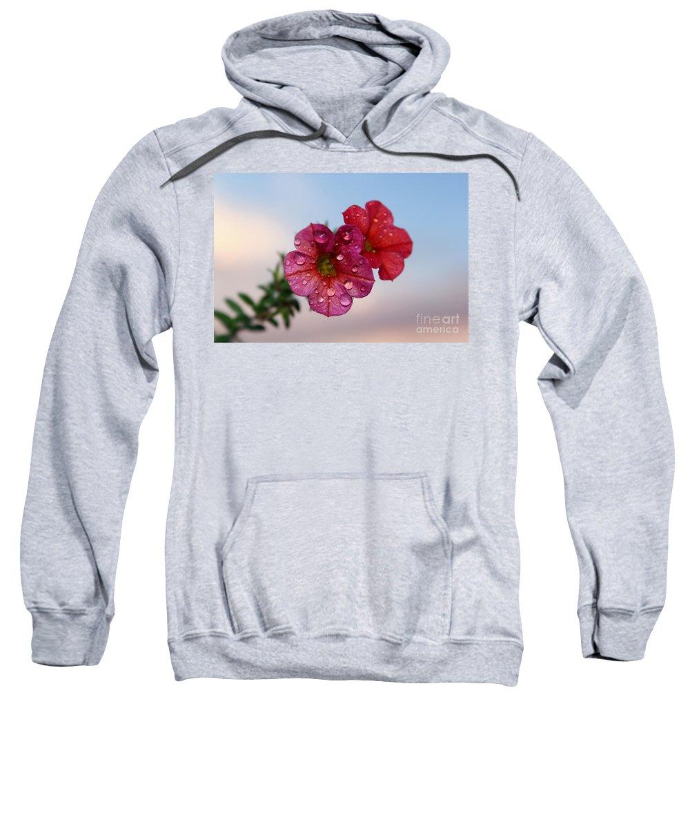 Petunia Sweatshirt featuring the photograph Moving On by Krissy Katsimbras