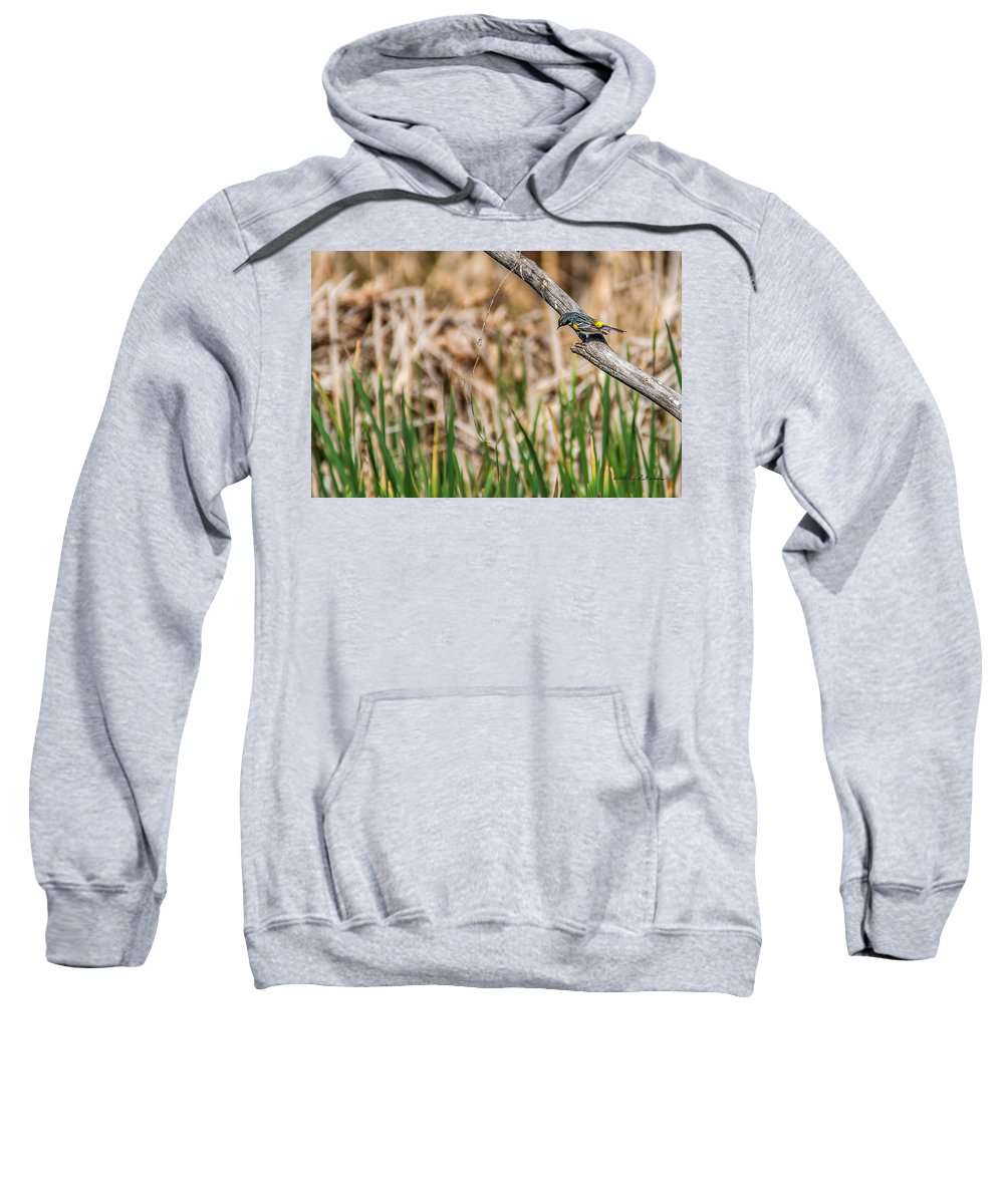 Heronheaven Sweatshirt featuring the photograph Myrtle Warbler Colors by Edward Peterson