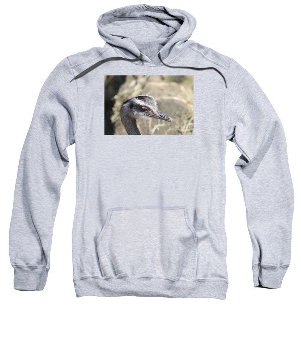 Nandu Sweatshirt featuring the photograph Nandu Or Rhea Portrait by Christiane Schulze Art And Photography