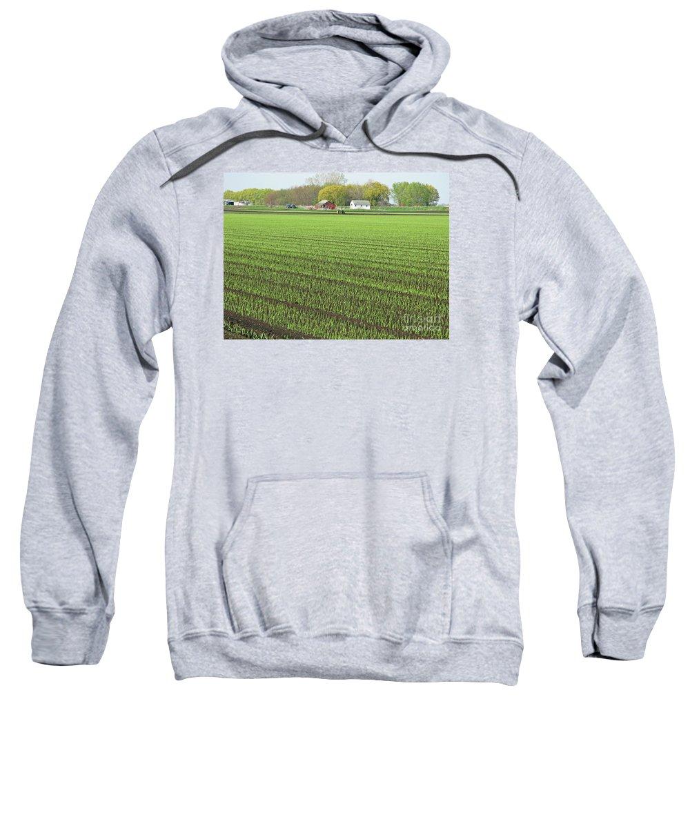 Farm Sweatshirt featuring the photograph New Crop by Ann Horn