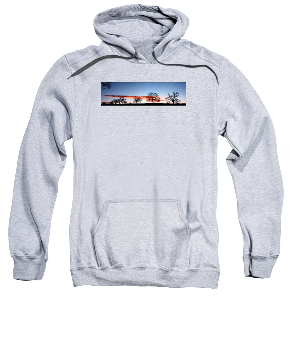 Tree Sweatshirt featuring the photograph Old Oak Trees On Old Humboldt Road by Robert Woodward