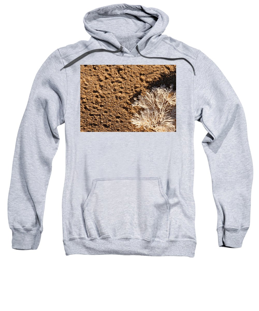 Australia Sweatshirt featuring the photograph On The Beach 06 by Rick Piper Photography