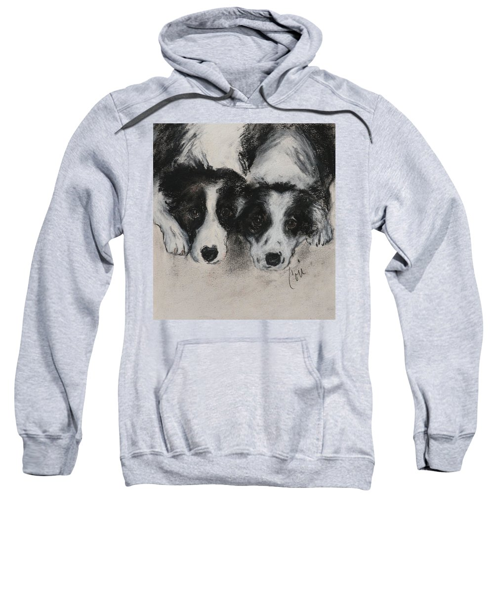 Border Collie Sweatshirt featuring the drawing On The Border by Cori Solomon