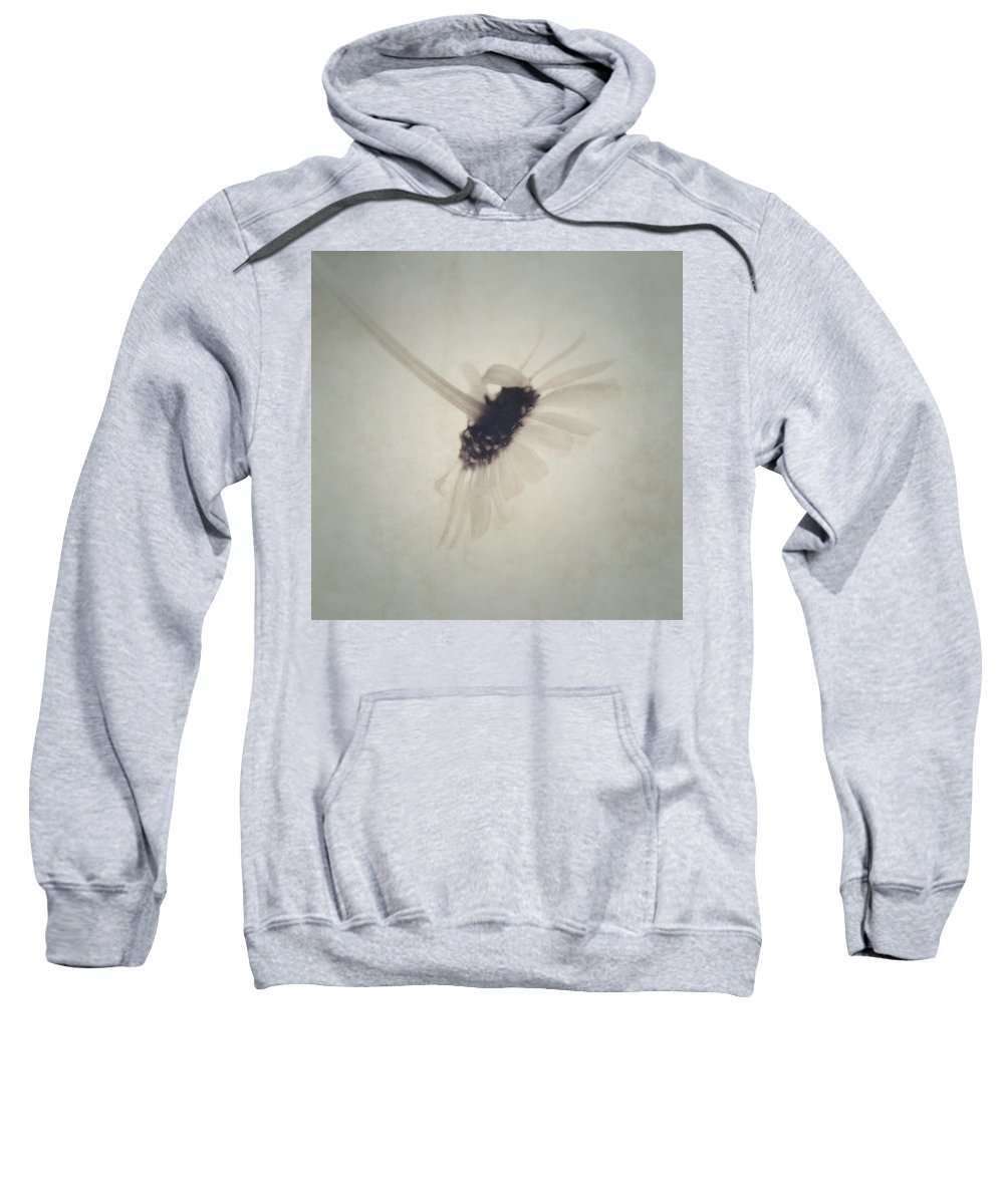 Daisy Sweatshirt featuring the photograph One Daisy -tret-sq02 by Variance Collections