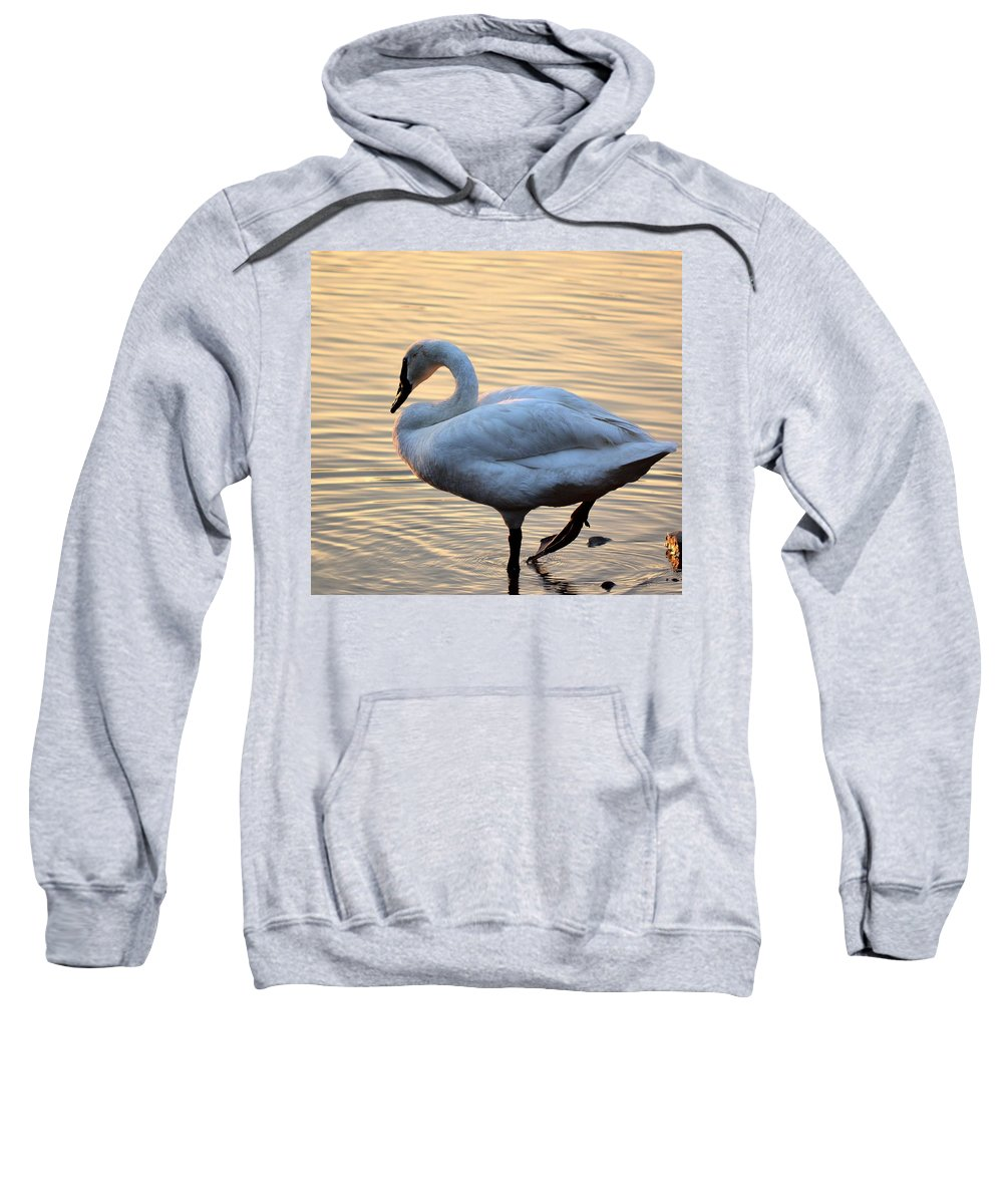 One Sweatshirt featuring the photograph One Last Swim by Maria Urso