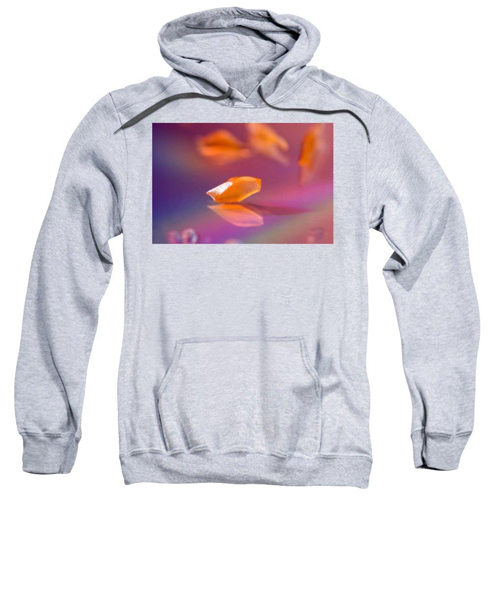 Orange Sweatshirt featuring the photograph Orange Bit by Lisa Knechtel