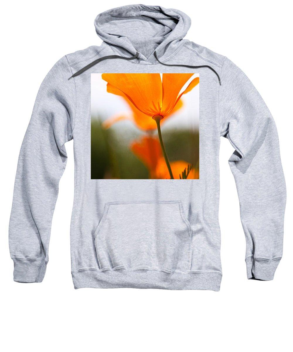 Poppy Sweatshirt featuring the photograph Orange Poppy In Sunlight by Marie Jamieson