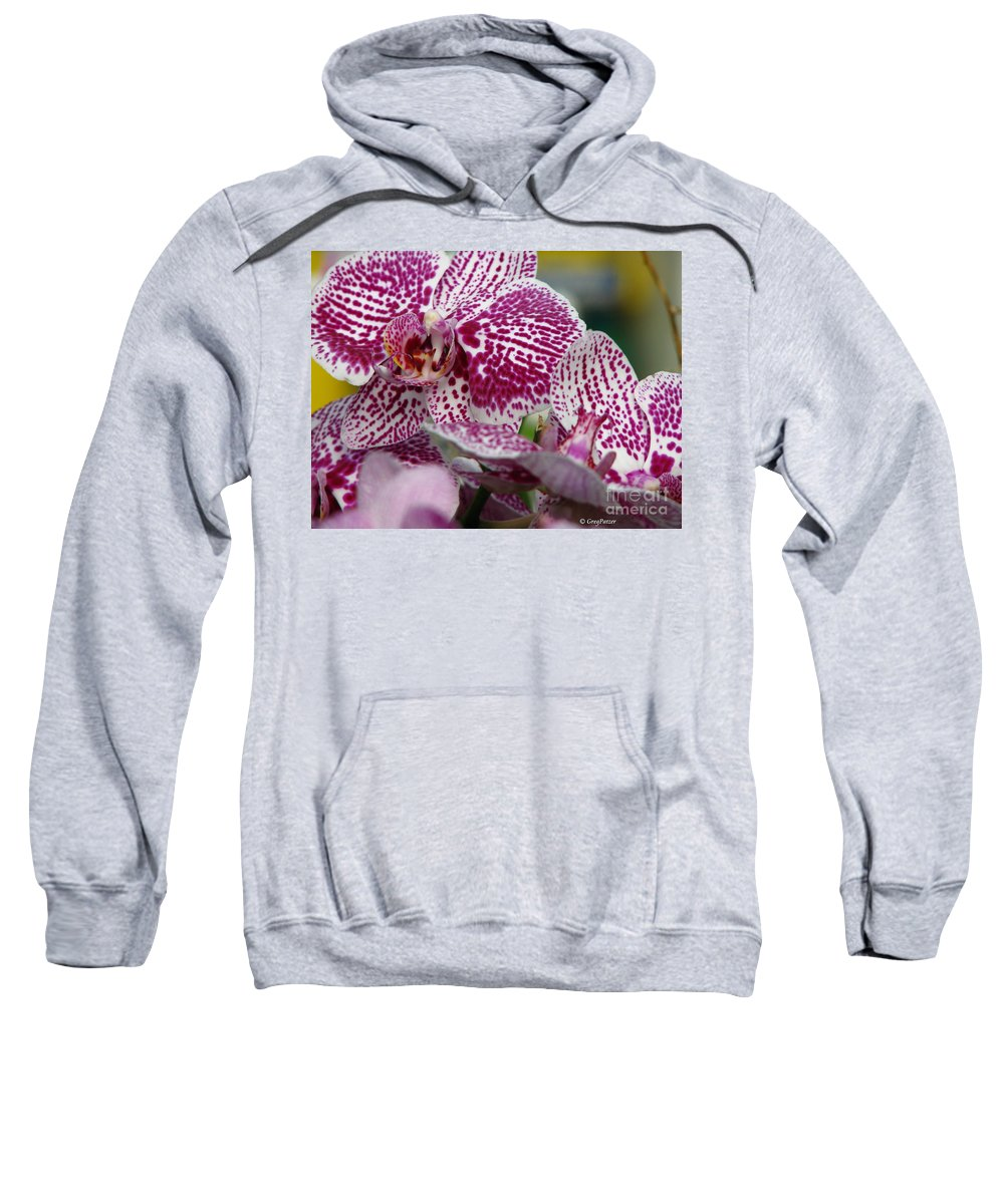 Patzer Sweatshirt featuring the photograph Orchid Art by Greg Patzer
