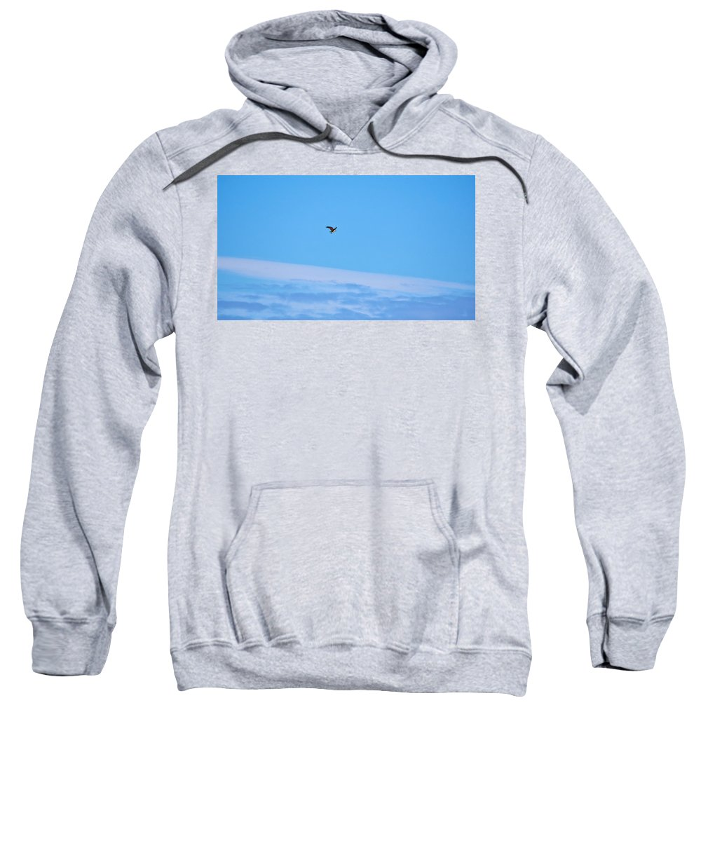 Finland Sweatshirt featuring the photograph Osprey And A Pike High Over The Clouds by Jouko Lehto