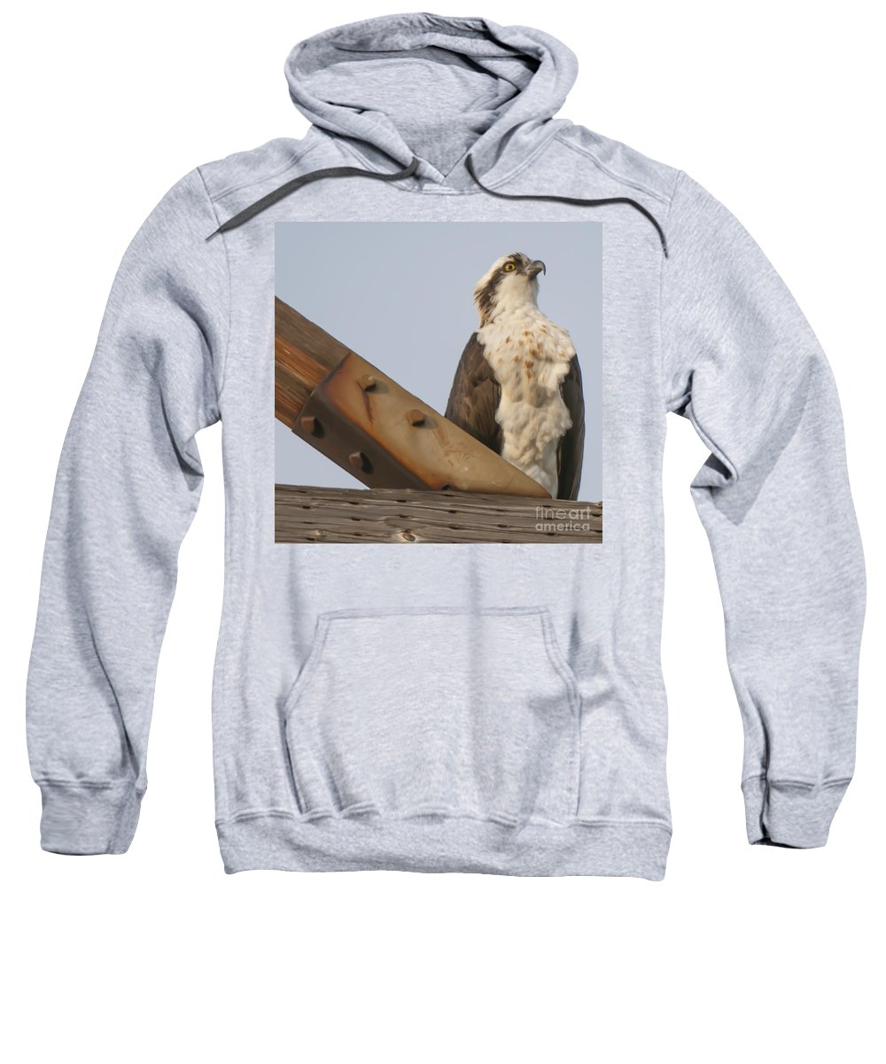 Osprey Sweatshirt featuring the photograph Osprey -seahawk by Dale Powell