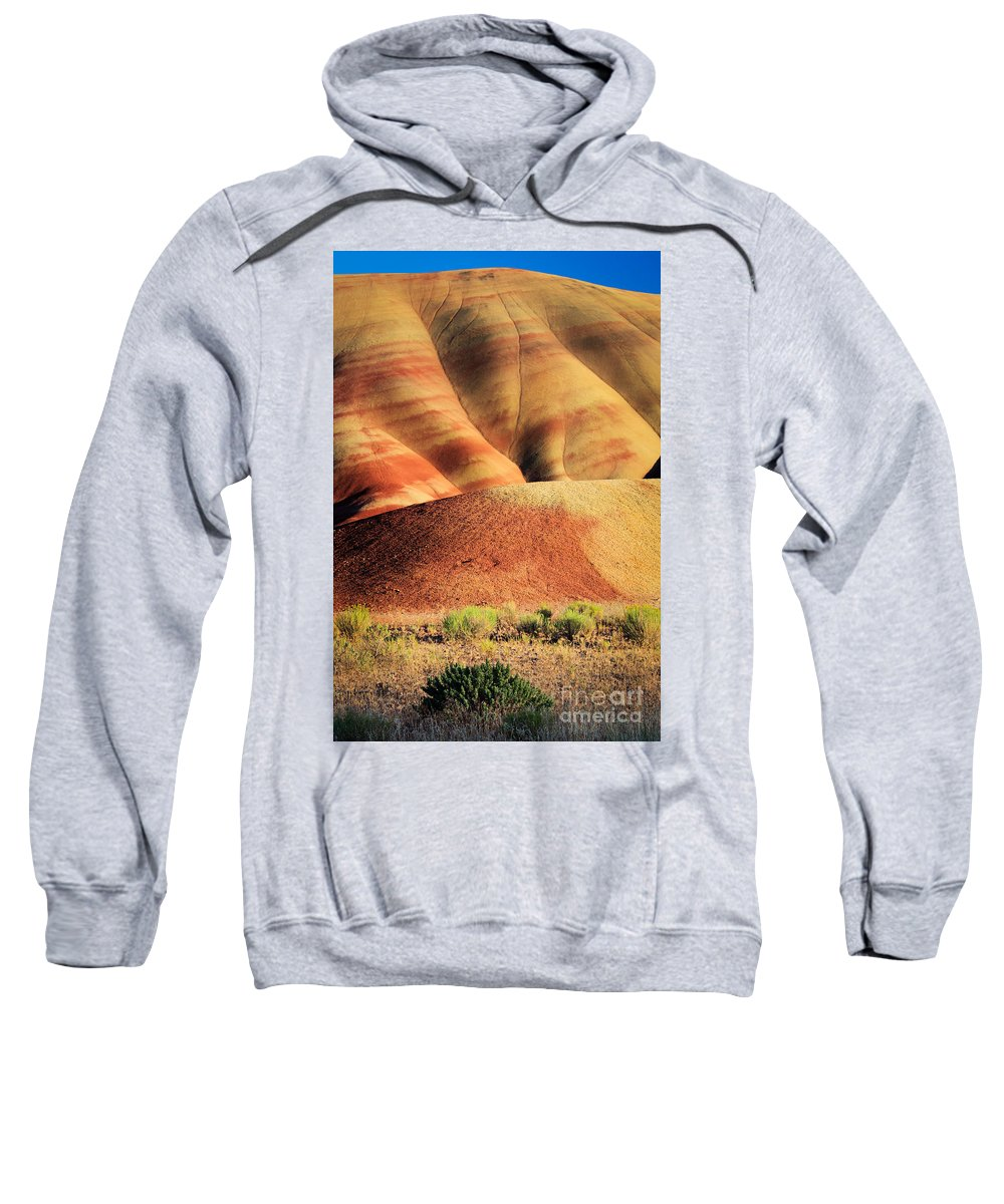 America Sweatshirt featuring the photograph Painted Hills And Grassland by Inge Johnsson