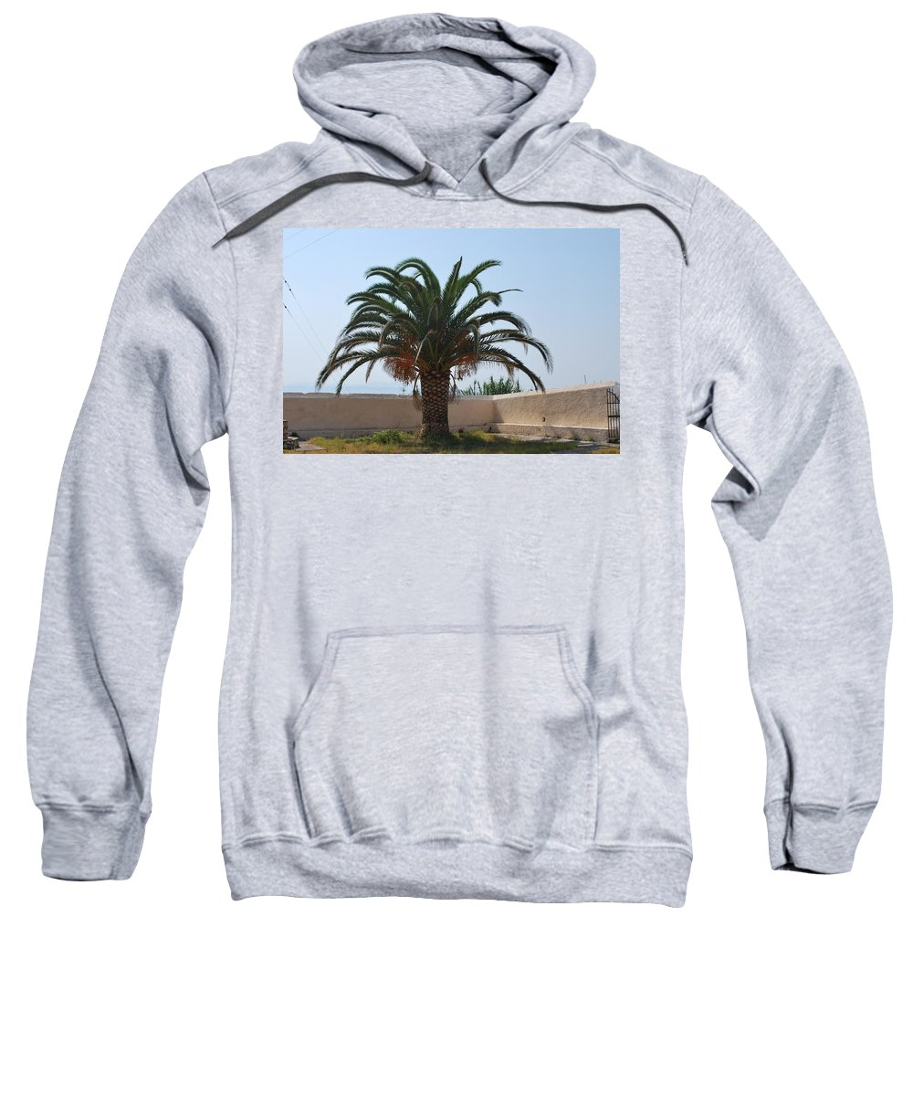 Palm Tree Sweatshirt featuring the photograph Palm Tree 3 by George Katechis