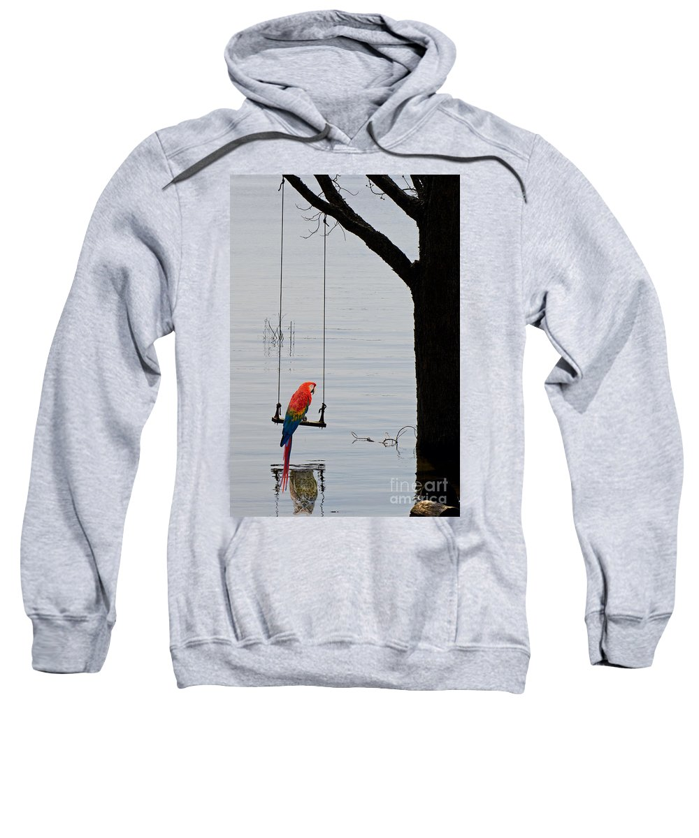 Tree Sweatshirt featuring the photograph Parrot On A Swing by Les Palenik