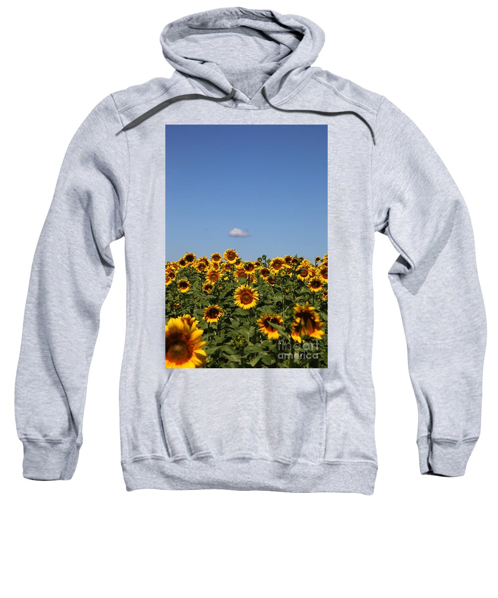 Sunflower Sweatshirt featuring the photograph Passing By by Amanda Barcon