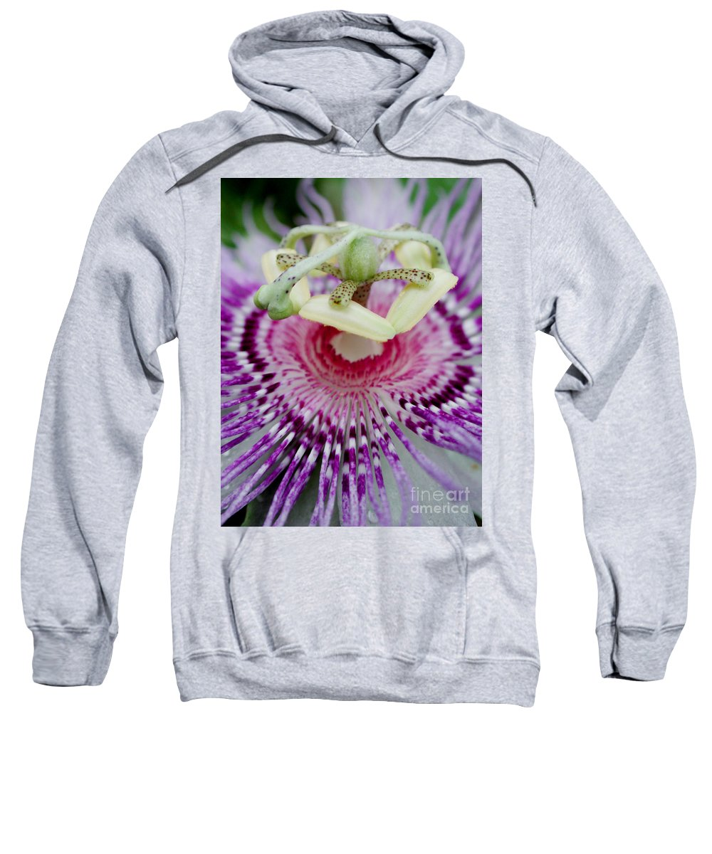 Passion Sweatshirt featuring the photograph Passion Flower In Bloom by Susan Bloom