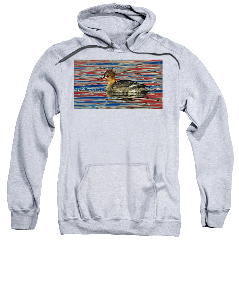 Merganser Sweatshirt featuring the photograph Patriotic Merganser by Dave Mills