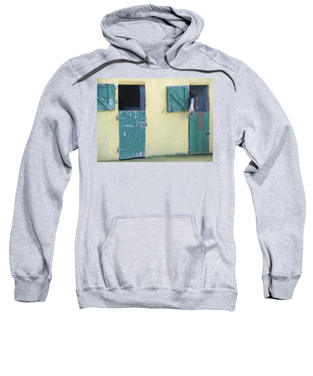 Horse Barn Sweatshirt featuring the photograph Peekaboo by Suzanne Oesterling