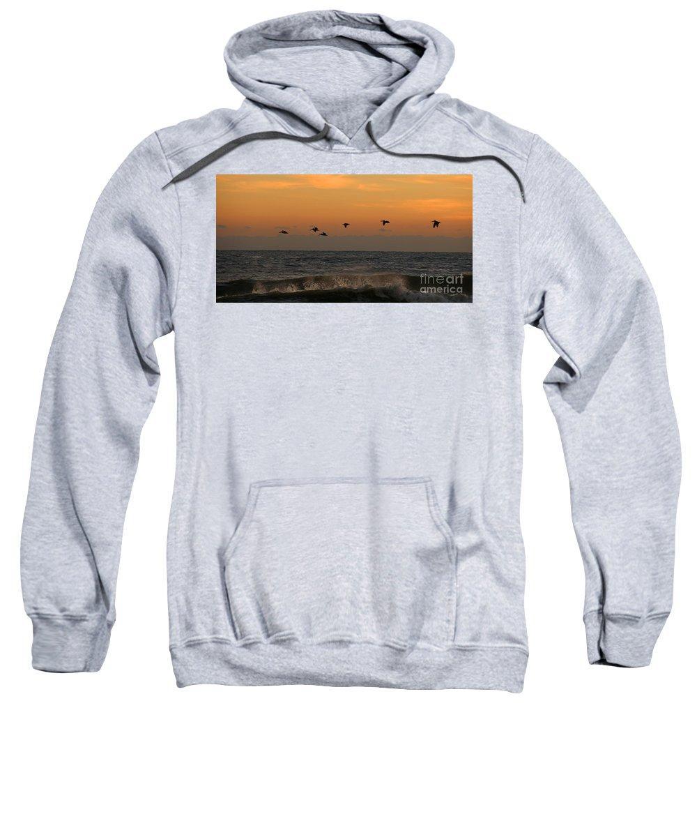 Pelicans Sweatshirt featuring the photograph Pelicans At Sunrise 4674 by Jack Schultz