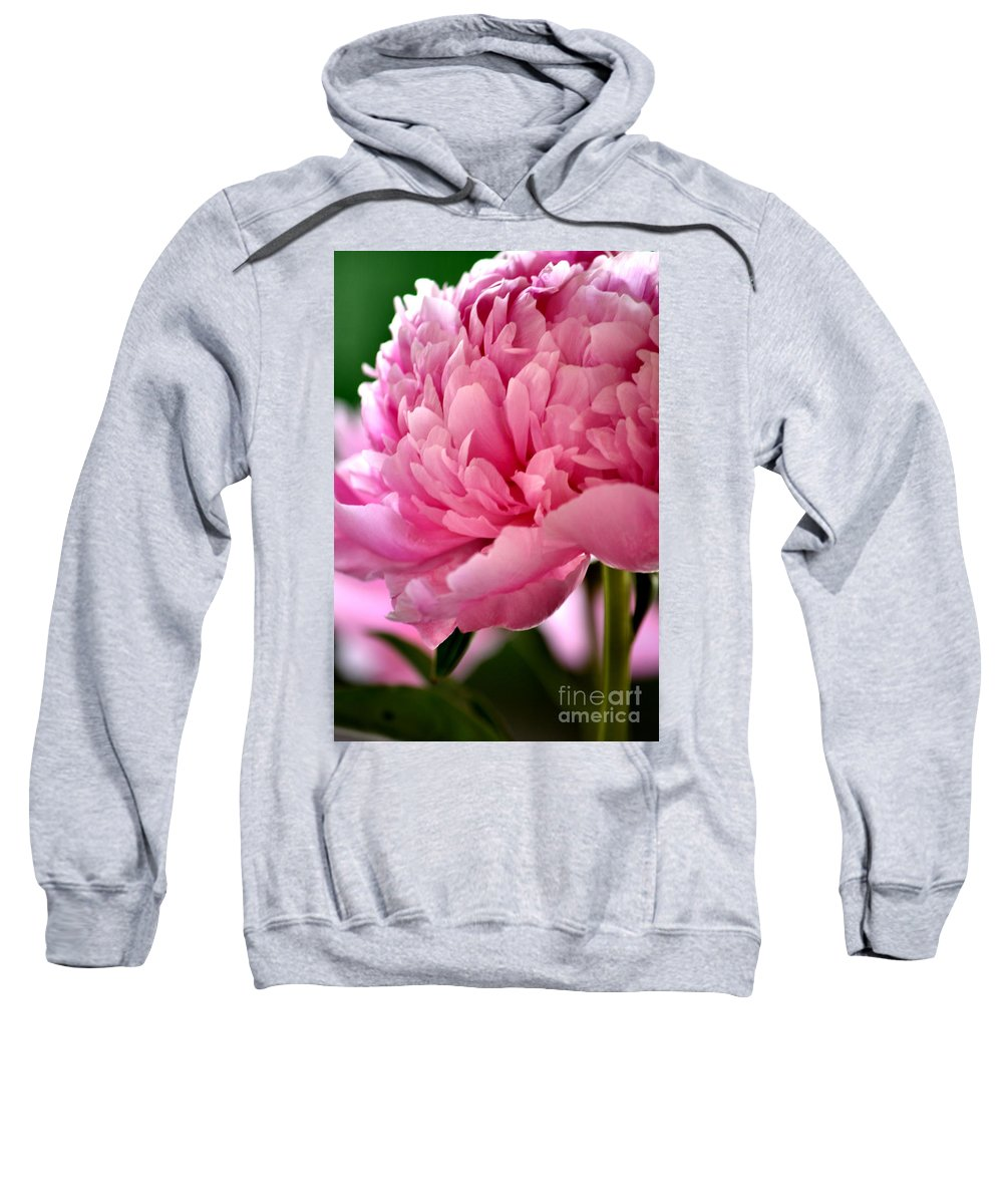 Pink Peonies Sweatshirt featuring the photograph Peonies In The Pink by Deb Halloran