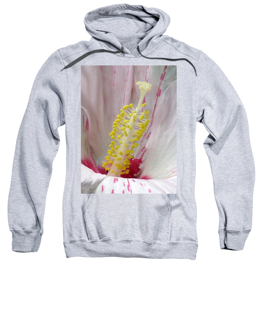 Hibiscus Sweatshirt featuring the photograph Peppermint Flame 03 by Pamela Critchlow