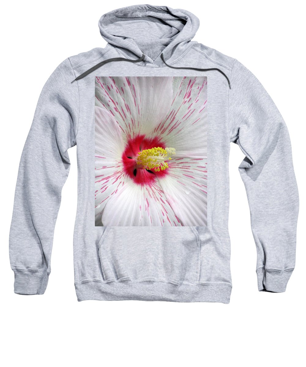 Hibiscus Sweatshirt featuring the photograph Peppermint Flame 05 by Pamela Critchlow