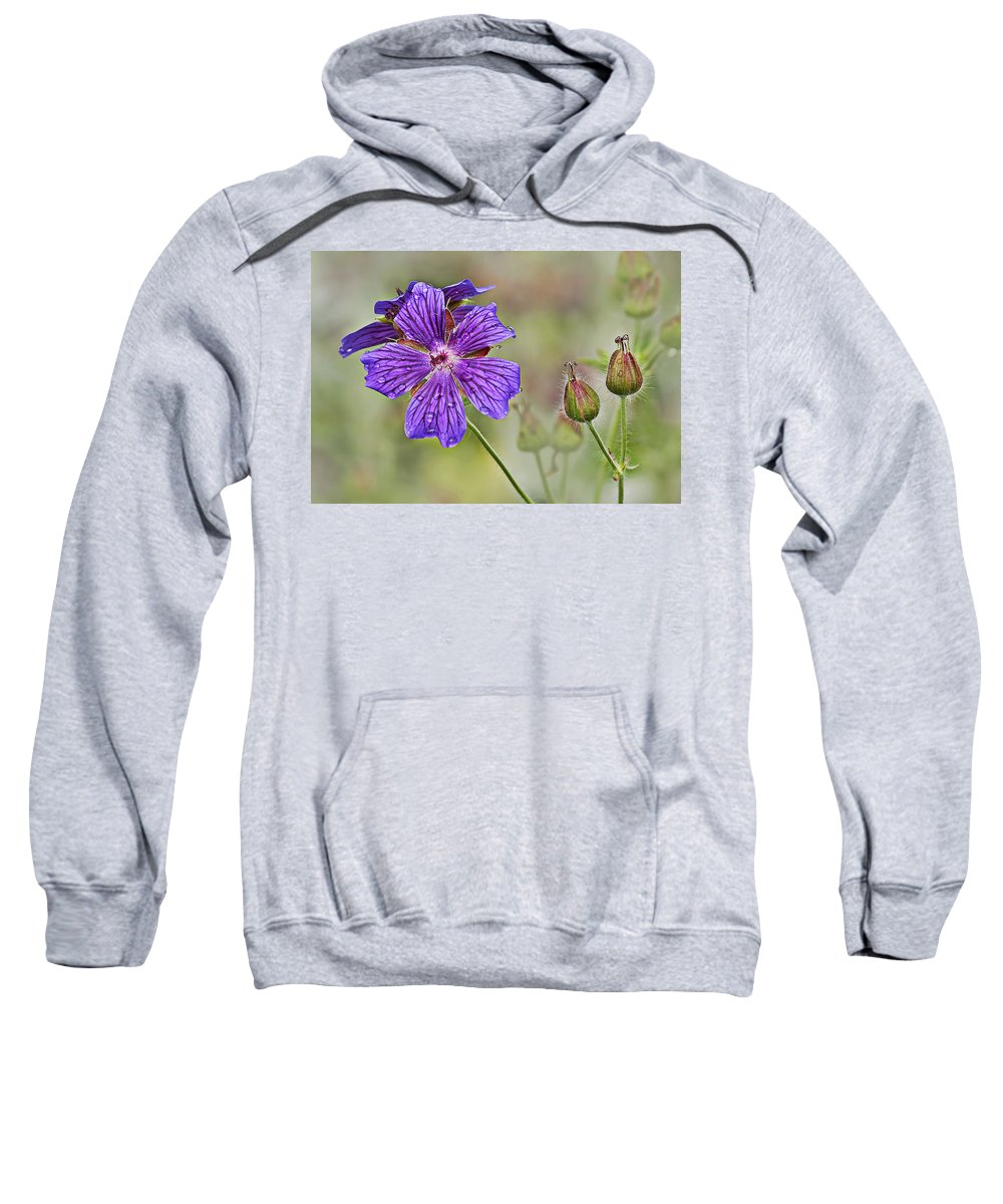 Floral Sweatshirt featuring the photograph Perennial Geranium by Marcia Colelli
