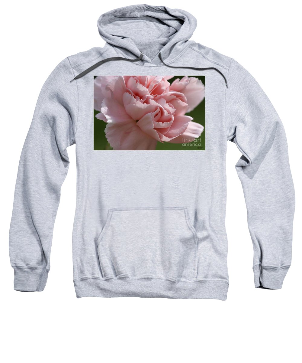 Pink Sweatshirt featuring the photograph Pink Carnation by Carol Lynch