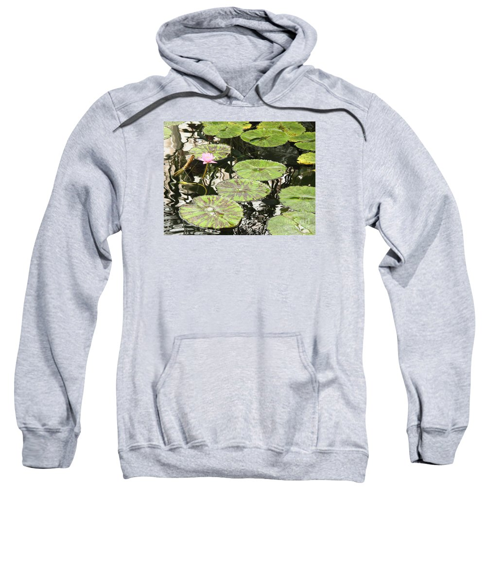 Pond Sweatshirt featuring the photograph One Pink Water Lily With Lily Pads by Carol Groenen