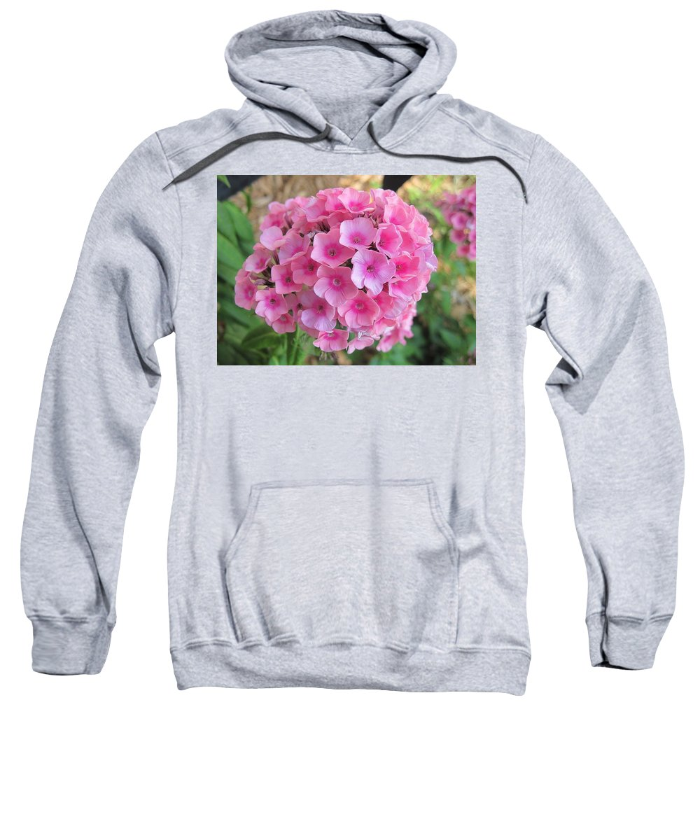 Phlox Sweatshirt featuring the photograph Pink Phlox 2 by Doug Morgan
