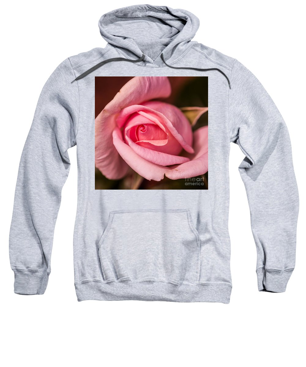 Flowers Sweatshirt featuring the photograph Pink Rose by James Adams