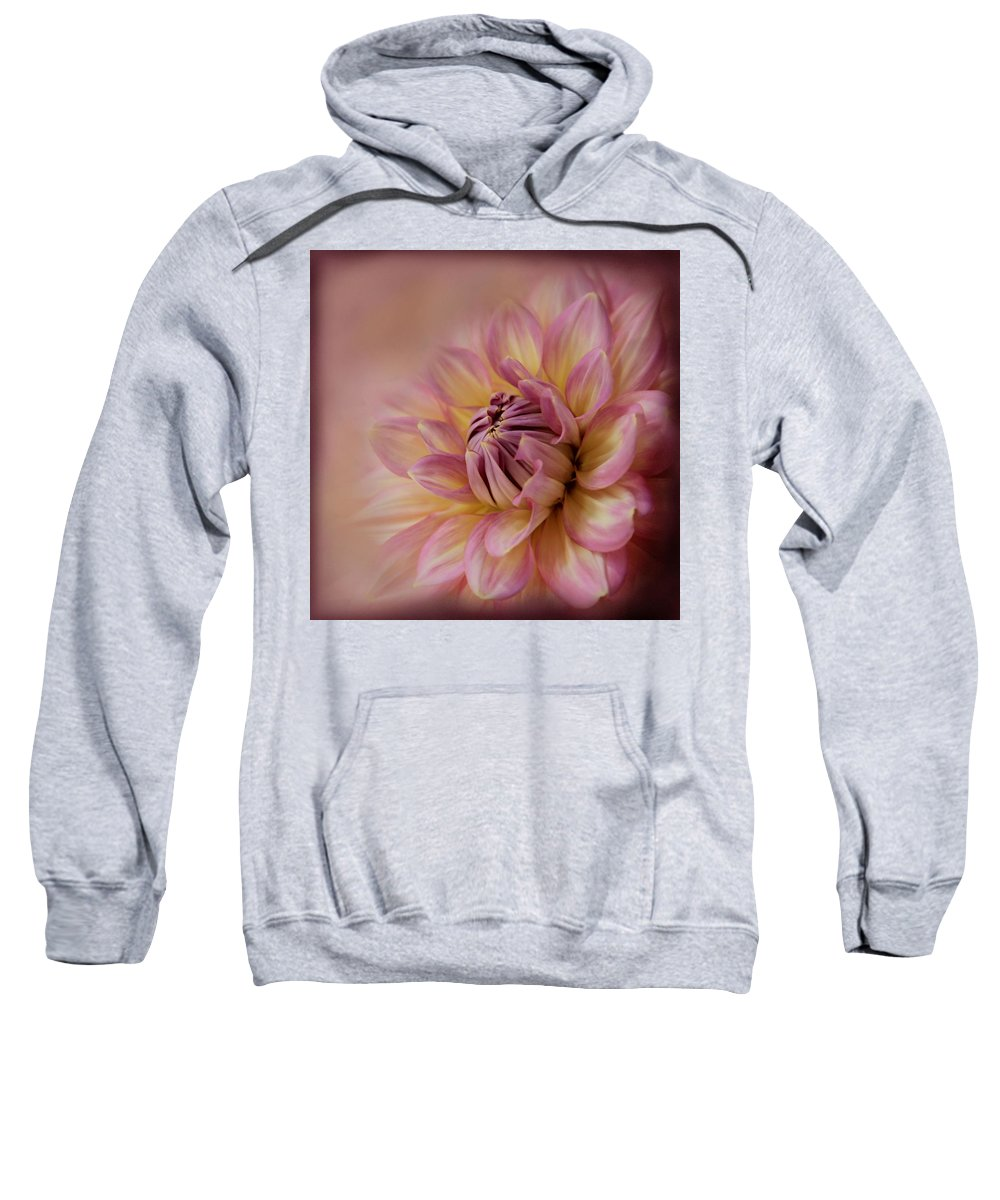 Pink Sweatshirt featuring the photograph Pink Sensation by Sally Bauer