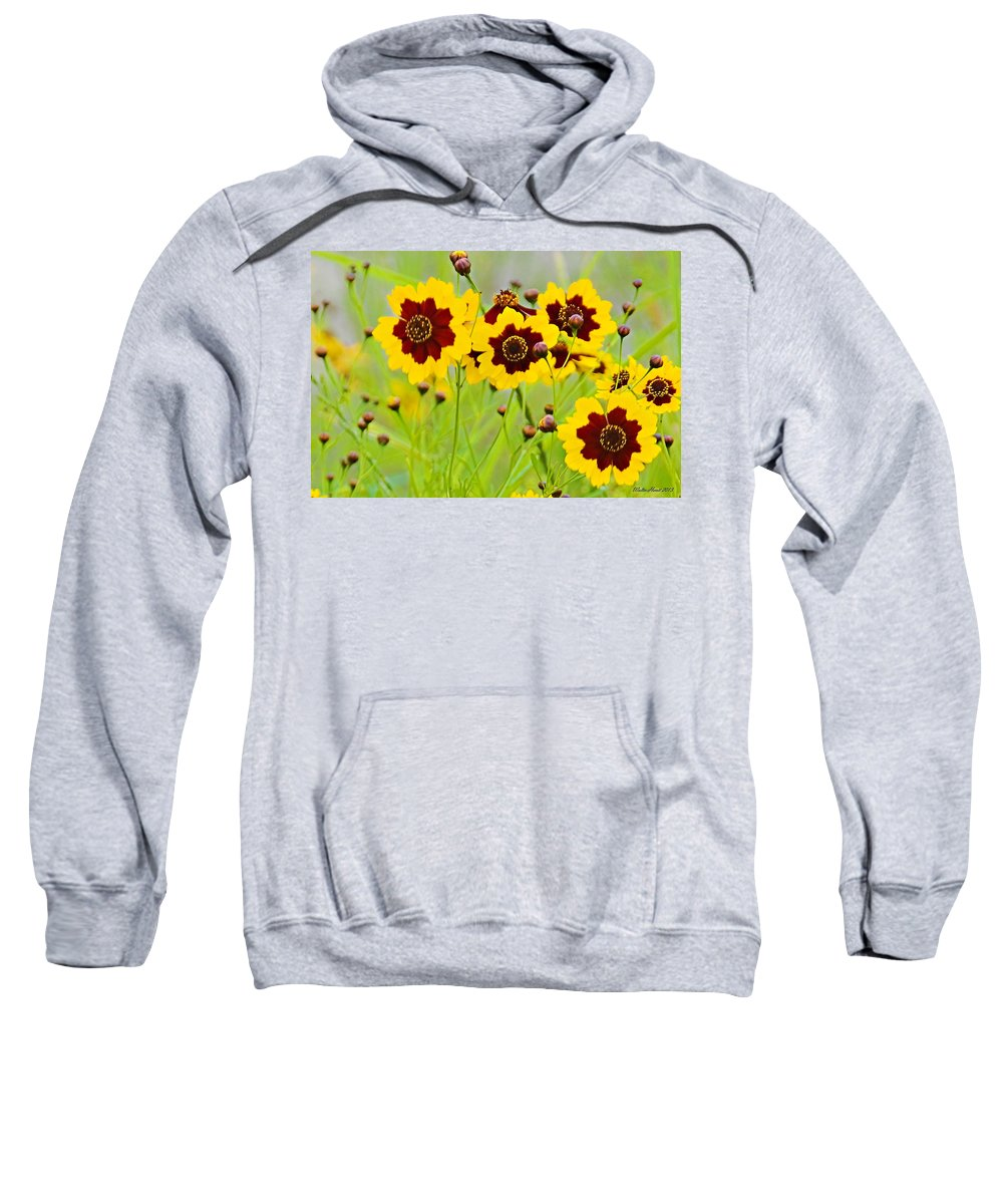 Plains Coreopsis Sweatshirt featuring the photograph Plains Coreopsis by Walter Herrit