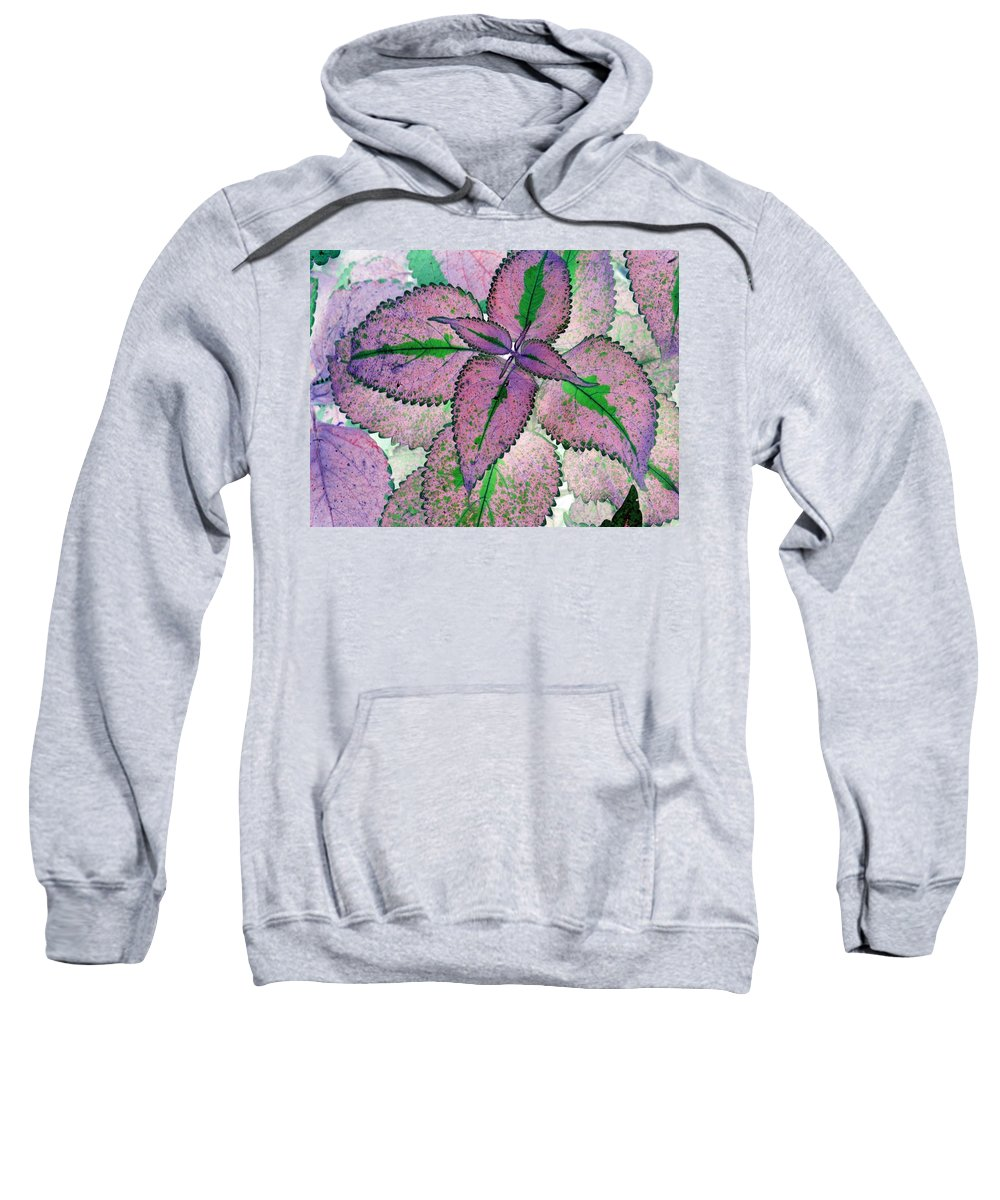 Plant Sweatshirt featuring the photograph Plant Pattern - Photopower 1211 by Pamela Critchlow