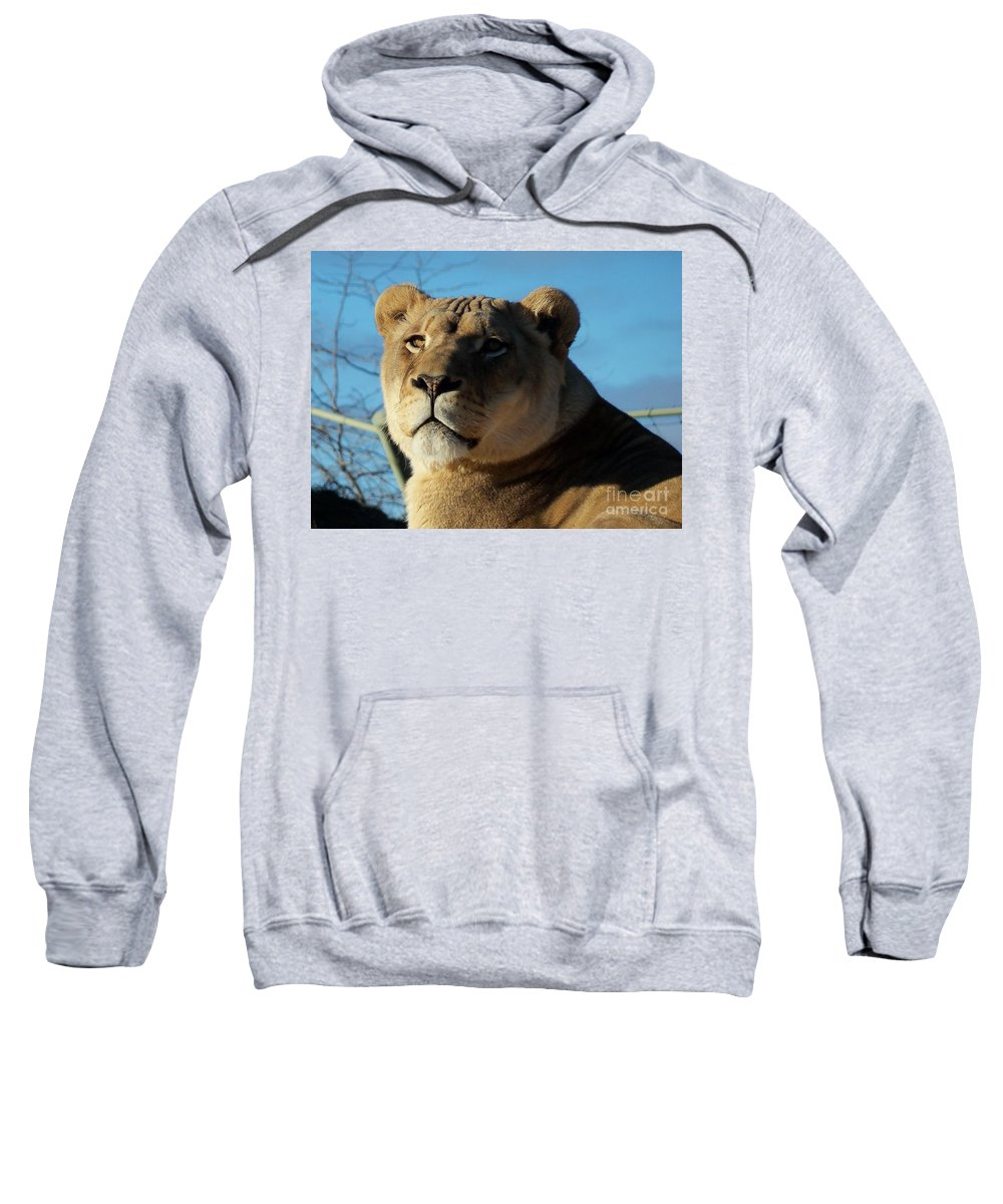 Wild Sweatshirt featuring the photograph Portrait Of The Mighty Queen by Lingfai Leung